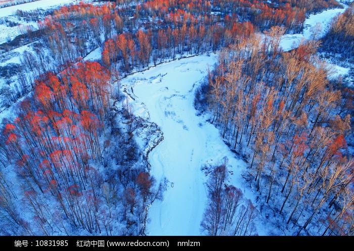 大兴安岭冬季林海图片