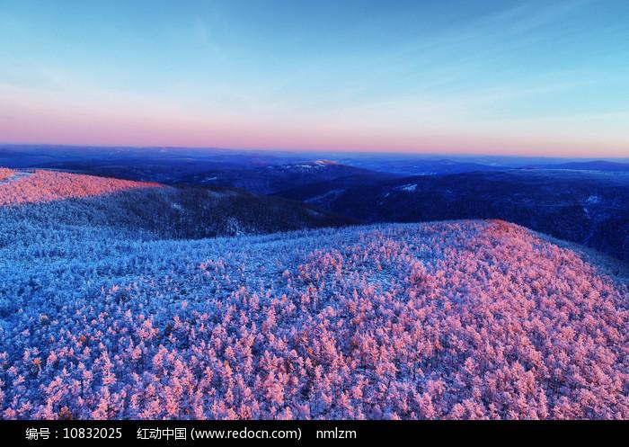 大兴安岭冬季林海雪原雪林朝阳图片