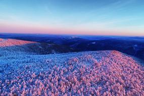 大兴安岭冬季林海雪原雪林朝阳