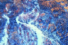 航拍大兴安岭冬季红树林