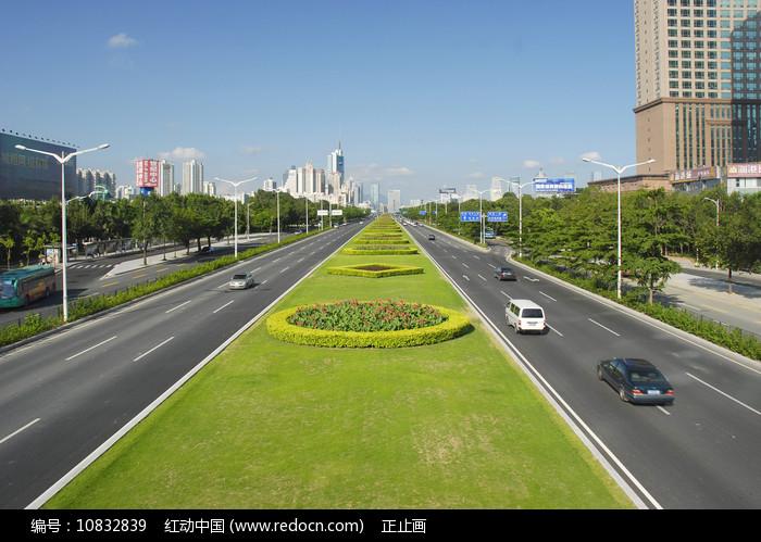深圳深南大道-道路及绿化带 图片