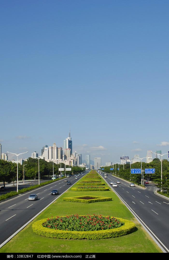 深圳深南大道-道路绿化带图片