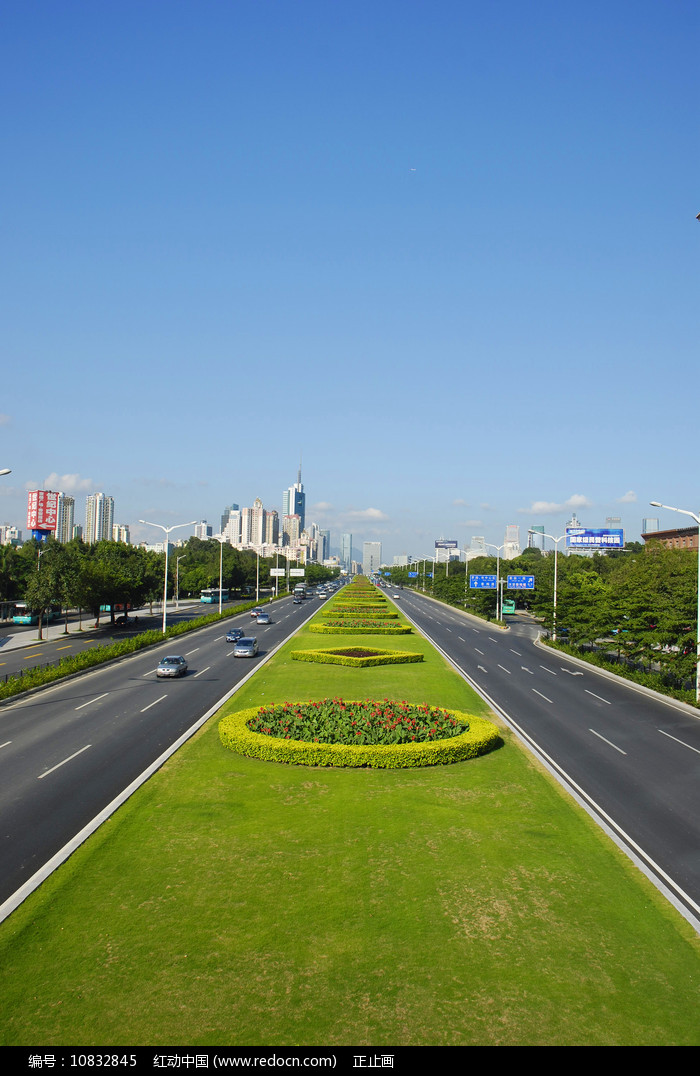 深圳深南大道绿化带图片