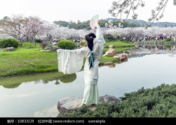 樱花叹-穿汉服的美女图片