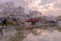 樱花园虹桥