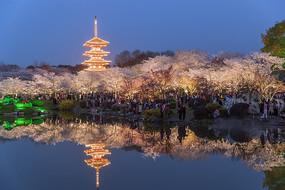 东湖樱园夜景