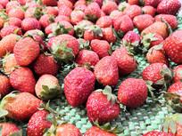 红彤彤的小草莓