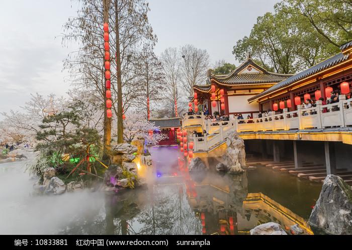 武汉樱园夜色图片
