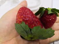 酸酸甜甜的草莓