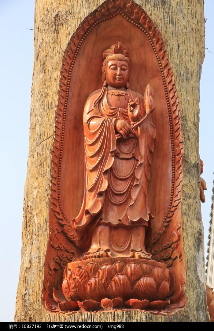 观音菩萨巨树雕像图片