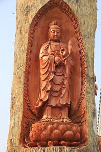 观音菩萨巨树雕像