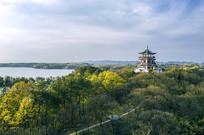 航拍南湾湖浉源阁