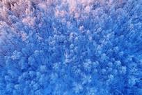 航拍林海雪原雪林