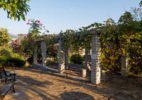 住宅小区休闲场所的绿色葡萄架