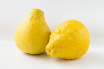 中华名果长寿沙田柚