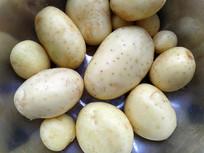 黄心土豆特写