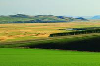 呼伦贝尔农业地理风光