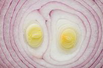 切开的洋葱平面圆圈形的图案