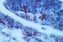 大兴安岭林海雪原冰河红柳