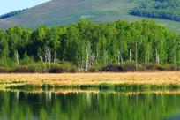 大兴安岭森林湖风光