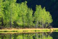大兴安岭森林湖景