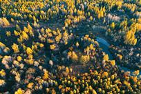航拍大兴安岭秋季森林河风景