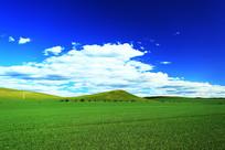 呼伦贝尔农业田园风光