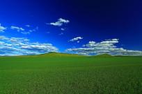 垦区田园风光