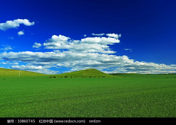 希望的田野 图片