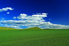 希望的田野