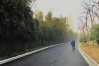 晨雾中的公园路