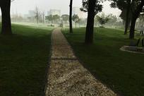 公园晨雾横构图