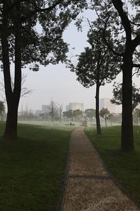 公园晨雾竖构图