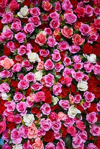 成片的仿真玫瑰花