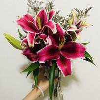 粉色百合花花束