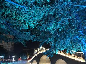 灯光秀桥会