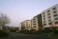 德国法兰克福清晨街道和路灯