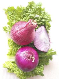 新鲜蔬菜洋葱