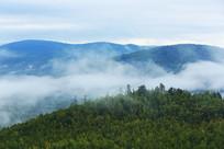 大兴安岭原始森林云雾缥缈