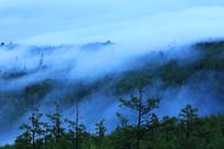 大兴安岭云雾山林景观