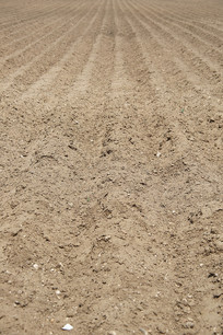 耕地旱地农田