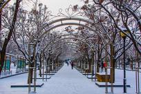 拱形造型门长廊人行路雪景