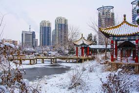 公园石桥凉亭高层建筑冰雪景