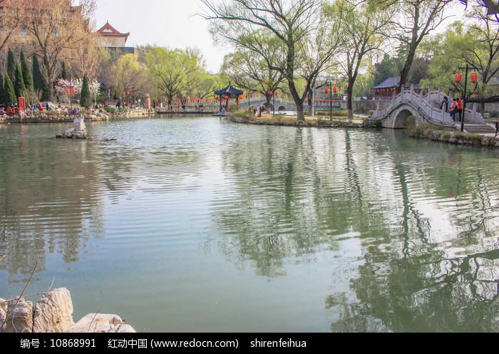 洋溪湖之春图片