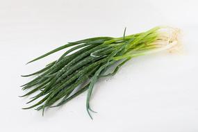 白背景上一把绿色的小葱