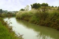 成都灌溉工程-东风渠