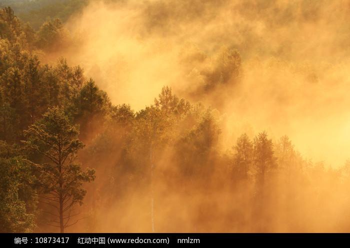大兴安岭朝阳云雾迷漫图片