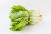 绿色蔬菜小白菜