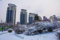 树木丛人行路雪景与高层建筑群