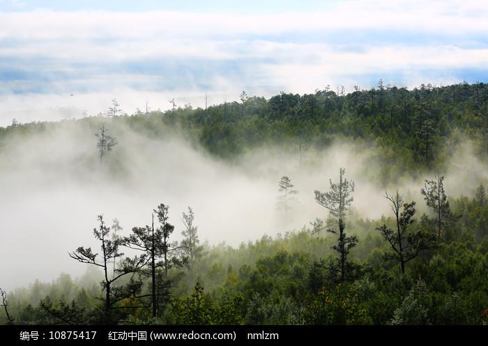 大兴安岭山林云雾迷蒙图片